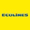 Ecolines автобусная компания лоукост