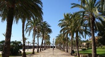 Подорож до Пальма-де-Майорка Іспанія
